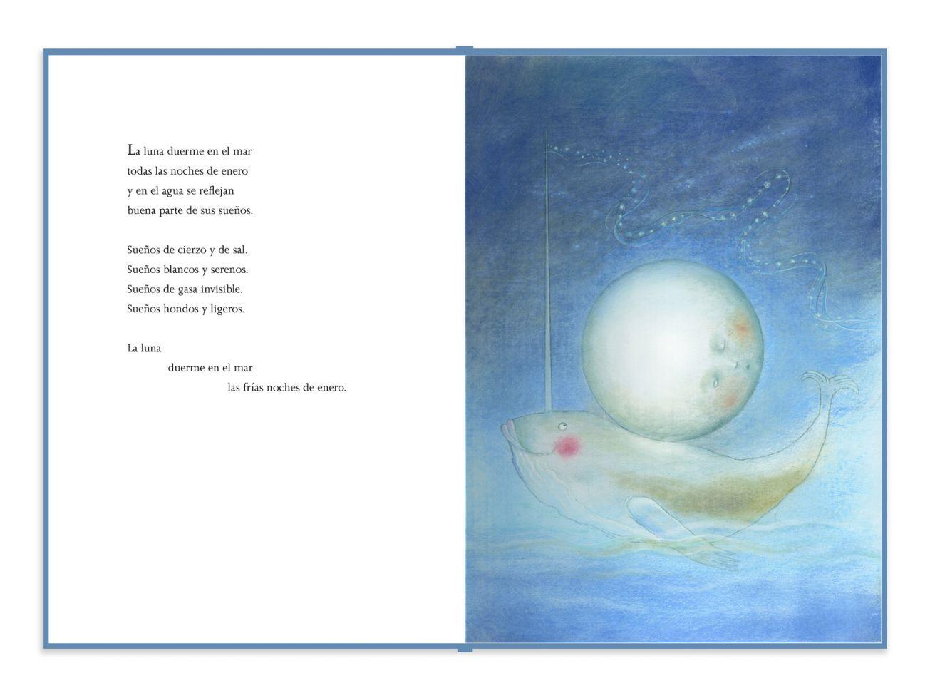 Libro En La Cuna Del Mar Infanmusic Infanmusic